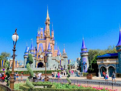Disney World Magic Kingdom Castle Painted